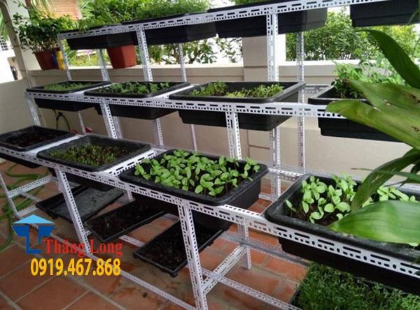 Giá kệ để khay trồng rau đa năng